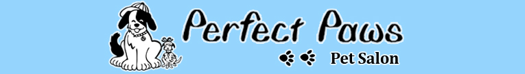 Perfect paws pet salon home for A perfect pet salon